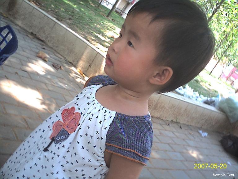 贝儿在社区花坛中玩。
