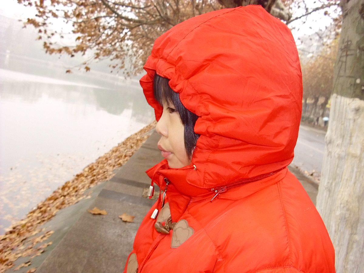 水中的树叶,是蚂蚁的'小船'...