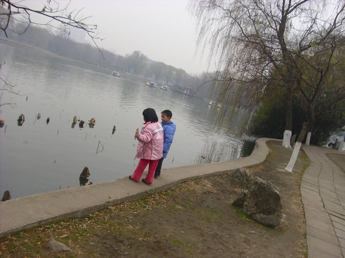 湖边尝荷...