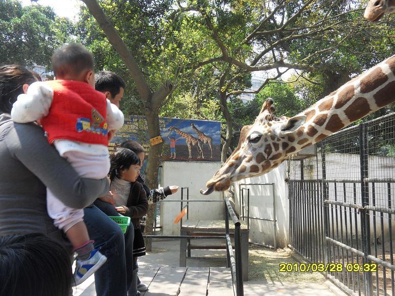 图依依出游记之 动物园帅哥美女