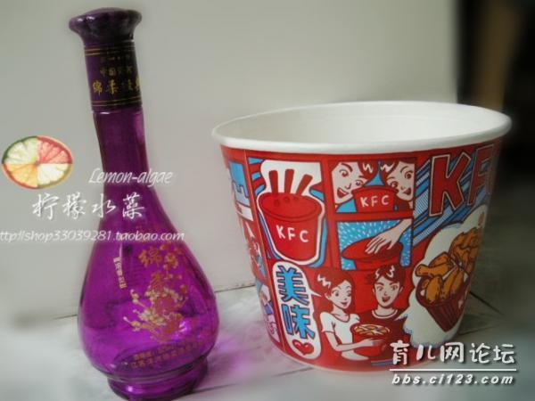 《柠檬水藻》手工diy——废物利用:kfc全家桶+废酒瓶